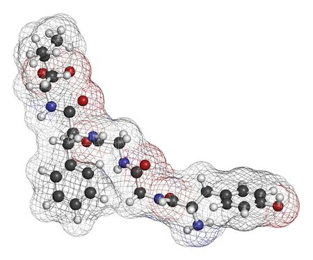 Leu-enkephalin endogenous opioid peptide molecule. 3D rendering. Atoms are represented as spheres with conventional color coding: hydrogen (white), carbon (grey), oxygen (red), nitrogen (blue).