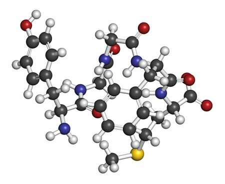 Met-enkephalin endogenous opioid peptide molecule. 3D rendering. Atoms are represented as spheres with conventional color coding: hydrogen (white), carbon (grey), oxygen (red), nitrogen (blue), sulfur (yellow).