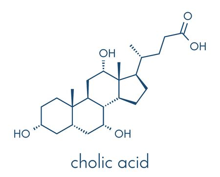 Cholic acid (cholate) molecule. Main bile acid component. Skeletal formula. Stock Illustratie