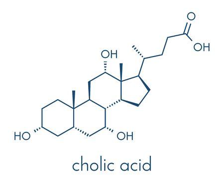 Cholic acid (cholate) molecule. Main bile acid component. Skeletal formula. Illustration