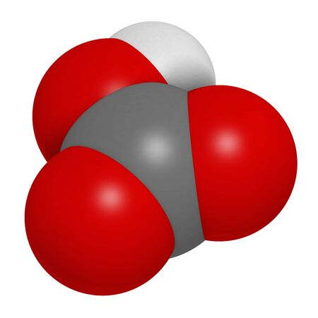 Bicarbonate anion, chemical structure. Common salts include sodium bicarbonate (baking soda) and ammonium bicarbonate. 3D rendering. Atoms are represented as spheres with conventional color coding: hydrogen (white), carbon (grey), oxygen (red). 写真素材