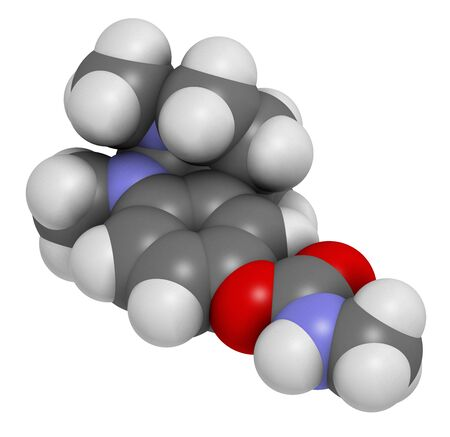 Physostigmine alkaloid molecule. Present in calabar bean and manchineel tree, acts as acetylcholinesterase inhibitor. 3D rendering. Atoms are represented as spheres with conventional color coding: hydrogen (white), carbon (grey), oxygen (red), nitrogen (blue). Banco de Imagens