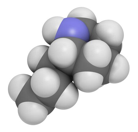 Coniine herbal toxin molecule. Present in poison hemlock (Conium maculatum). 3D rendering. Atoms are represented as spheres with conventional color coding: hydrogen (white), carbon (grey), nitrogen (blue).