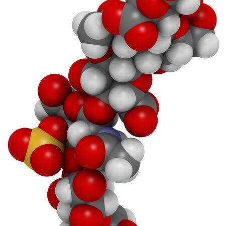 Chondroitin sulphate (short fragment). Important component of cartilage. Used as dietary supplement in treatment of osteoarthritis. 3D rendering. Atoms are represented as spheres with conventional color coding.