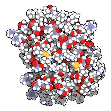 Platelet factor 4 (PF-4) chemokine protein. 3D rendering, atoms are represented as spheres with conventional color coding.