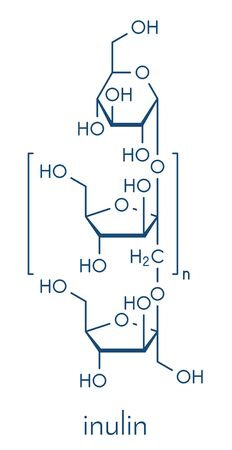 Inulin, chemical structure. Sweet, indigestible carbohydrate, present in chicory and number of other plants. Skeletal formula.