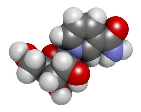 Nicotinamide riboside (NR) molecule. Precursor of nicotinamide adenine dinucleotide (NAD). 3D rendering. Atoms are represented as spheres with conventional color coding: hydrogen (white), carbon (grey), oxygen (red), nitrogen (blue).