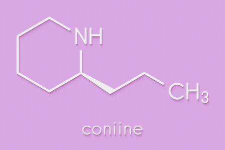 Coniine herbal toxin molecule. Present in poison hemlock (Conium maculatum). Skeletal formula. Stockfoto