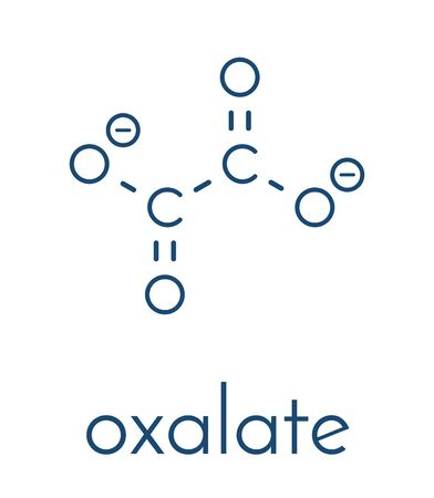 Oxalate anion, chemical structure. Oxalate salts can form kidney stones. Skeletal formula.