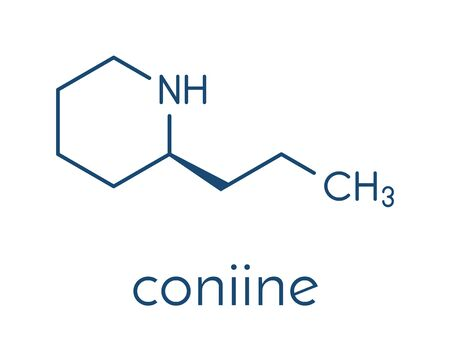 Coniine herbal toxin molecule. Present in poison hemlock (Conium maculatum). Skeletal formula.