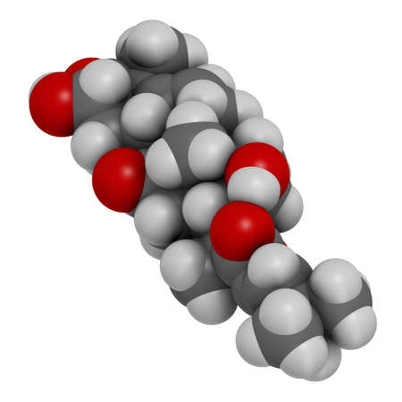 Cucurbitacin D bitter molecule. 3D rendering. Atoms are represented as spheres with conventional color coding: hydrogen (white), carbon (grey), oxygen (red).