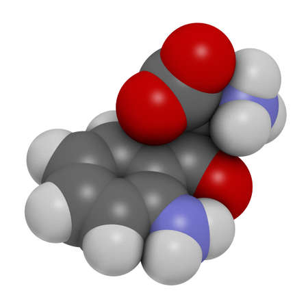Kynurenine molecule. 3D rendering. Atoms are represented as spheres with conventional color coding: hydrogen (white), carbon (grey), oxygen (red), nitrogen (blue).