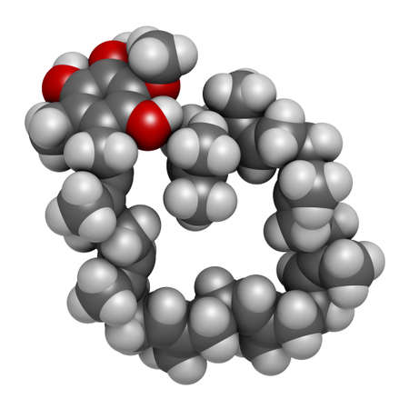 Ubiquinol molecule. Reduced form of coenzyme Q10. 3D rendering. Atoms are represented as spheres with conventional color coding: hydrogen (white), carbon (grey), oxygen (red). 版權商用圖片