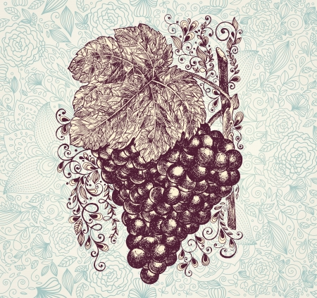 grape juice: illustration with branch of grapes Illustration