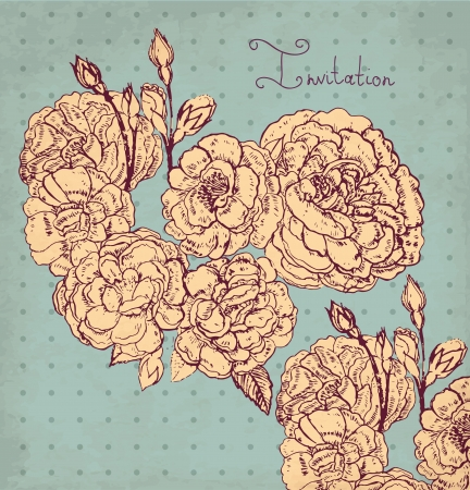 hand drawn vintage illustration with roses Stock Vector - 17922134