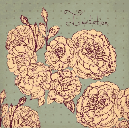 hand drawn vintage illustration with roses Vector