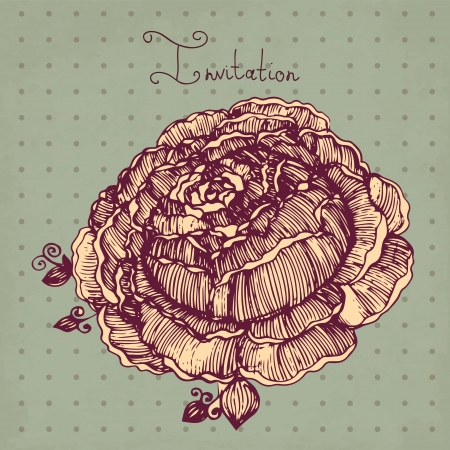 hand drawn vintage illustration with rose Vector
