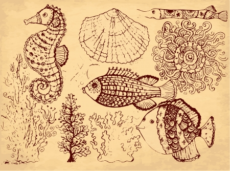 hand drawn illustration with fishes Vector