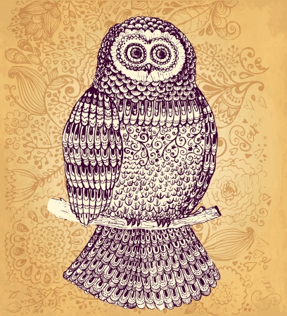 Hand drawn vector owl  Vector