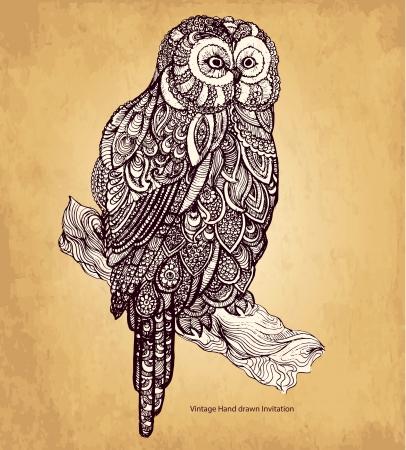 貓頭鷹裝飾 向量圖像