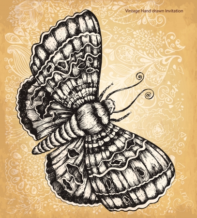 Vintage hand drawing butterfly Vector