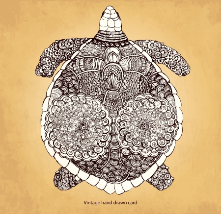 Hand drawn turtle 向量圖像