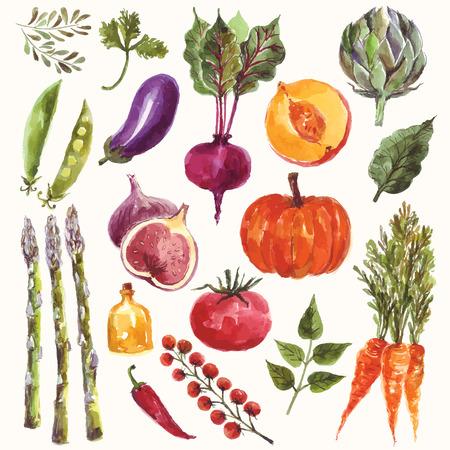 Vector acuarela conjunto: verduras y frutas Foto de archivo - 41791415