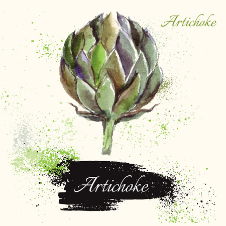 watercolor technique: Beautiful hand painted vector illustration with artichoke in watercolor technique. Beautiful card.