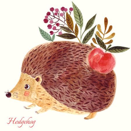 美しい手描きの水彩画の手法でかわいいハリネズミの愛らしいイラストです。
