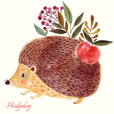 illustration technique: Beautiful hand painted illustration with adorable cute hedgehog in watercolor technique.