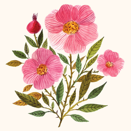 jardines con flores: Pintado a mano acuarela ramo floral.
