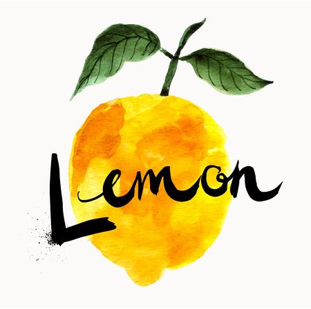 watercolor technique: Hand drawn vector lemon in watercolor technique. Template for farmers market, organic food, natural product design. Creative artistic design