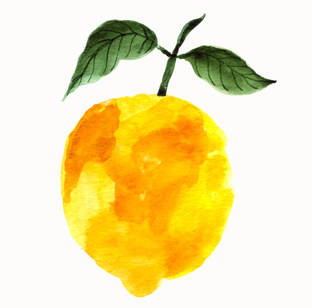artistic: Hand drawn vector lemon in watercolor technique. Template for farmers market, organic food, natural product design. Creative artistic design