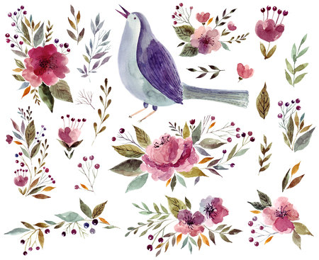 botanical gardens: Watercolor illustration with bird and flowers