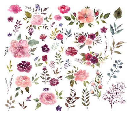 Set van aquarel illustratie met fantastische bloemen en bladeren Stockfoto