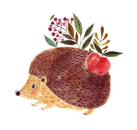 귀여운 고슴도치와 수채화 그림