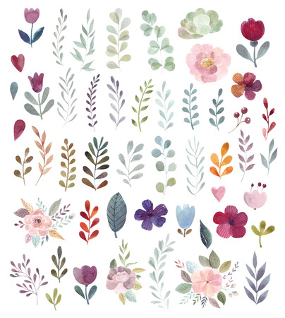 Big watercolor collection with watercolor branches and flowers