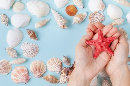 Womens hands hold a starfish on a blue summer background with different shells and starfish