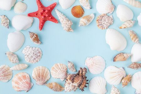 Frame from sea shells and starfish on blue background