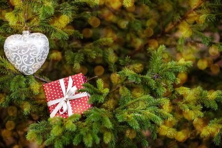 Christmas toy and gift box among fir tree branches blurred lights on background Imagens