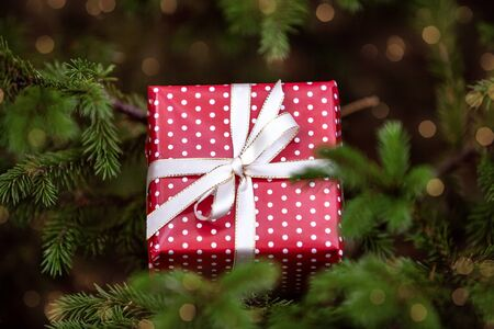 Close-up of Christmas gift box on the fir tree. Happy new year background bokeh.
