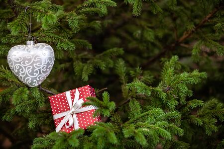 Christmas toy and gift box among fir tree branches. New year seasonal background