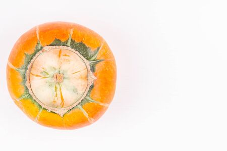 Trendy ugly organic farm double mutation pumpkin on white background. Concept non-waste production in food industry and a world without starvation. Copy space. Top view.