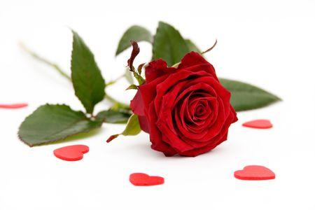 Rote Rosen und kleine Herzen auf weißem Hintergrund  Standard-Bild - 928625