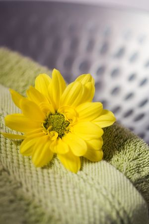 cleaness: Clean terrycloth towels and beautiful yellow flower