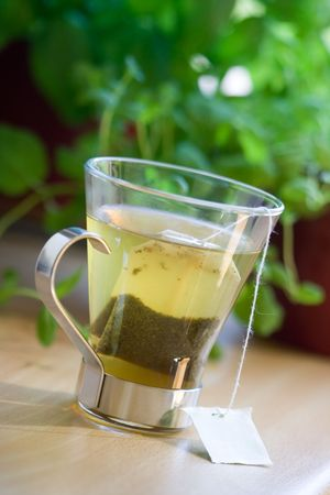 tea hot drink: Green tea bag in glass tea cup