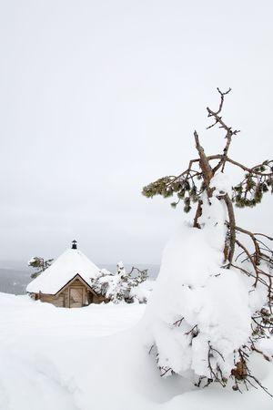 laponie: Paysage d'hiver en Laponie Finlande  Banque d'images