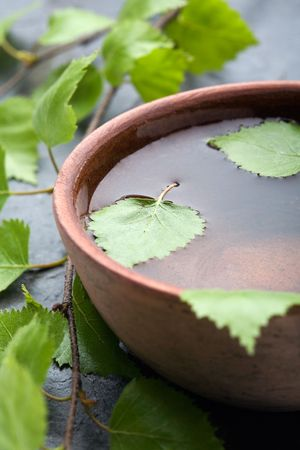 cleaness: Natural spa with fresh birch leaves