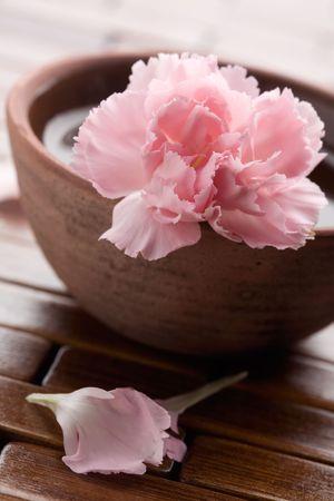 Pink Dianthus dans Brown Bowl