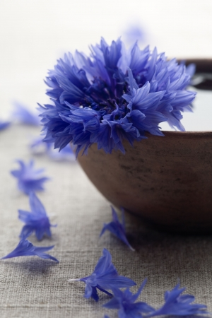 Blue cornflower in brown bowl Stock Photo - 3265237